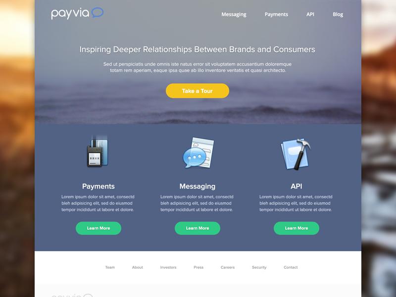 payvia_concept