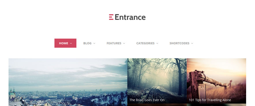 entrance-wp-theme