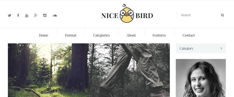 nice-bird-wp-theme