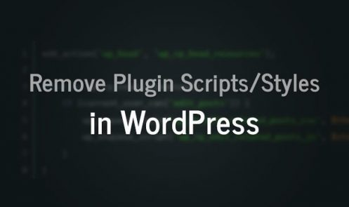 How to Remove Plugin Scripts & Stylesheets in WordPress