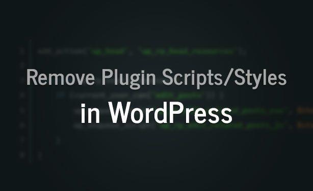 remove-scripts-styles-thumb