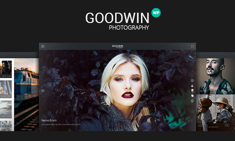 goodwin-wordpress-theme