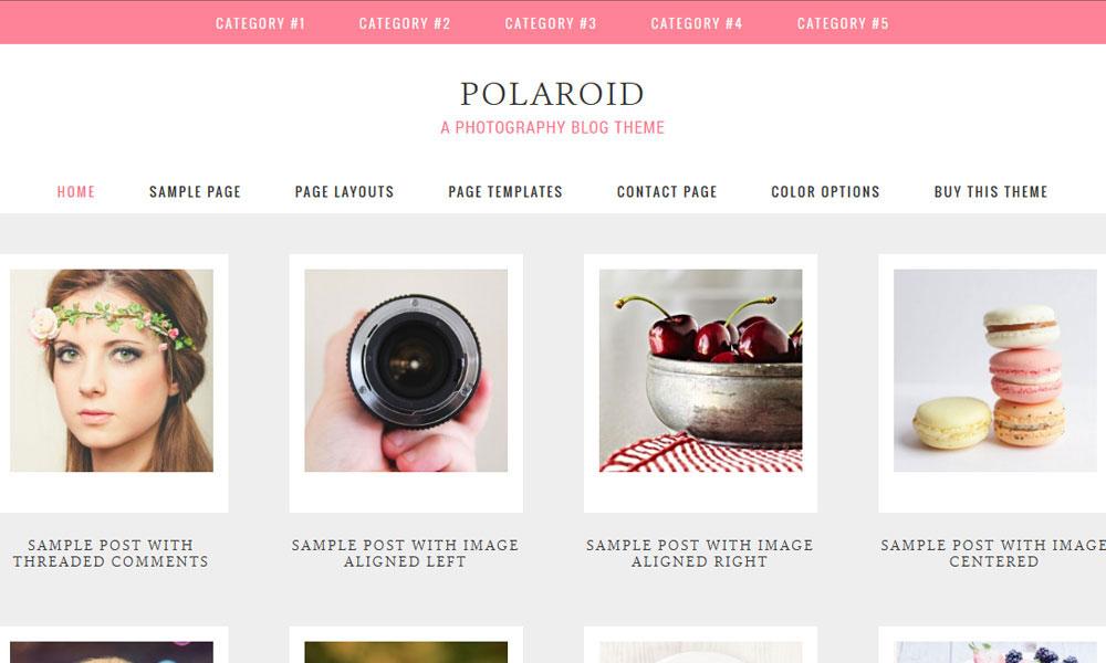 polaroid-wordpress-theme