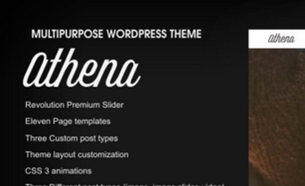 wordpress-themes-for-photographers
